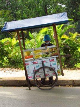 Siem Reap - Au hasard des rues, vendeur