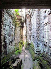 Siem Reap - Temple 'Preah Khan'