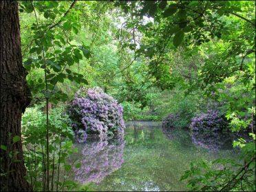 Berlin - Grand jardin aux animaux 'großer Tiergarten'