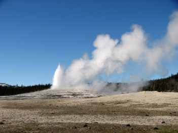 Wyoming - Yellowstone - Old Faithful Geyser